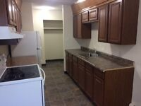 1 and 2  bedroom apartments ..Northgate mall area