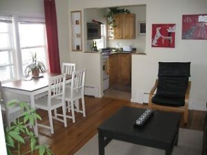 GREAT VALUE : FULLY FURNISHED 1 BEDRM SOUTH END