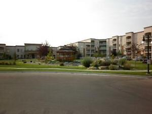 For Rent: Adult Only Condo (2020 32 St S, Lethbridge)