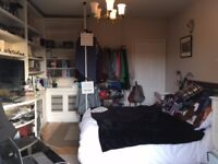 Wonderful room with private balcony and roof terrace to rent in friendly house share