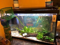 Various size fish tanks for sale.