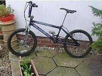 Newboy Ruption Dirt Bike for sale in Wolston