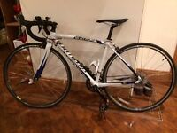 Road bike by Specialized, Allez 49cm model, white, black and blue