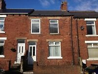 Dh9: Tantobie 3 bed large terraced house, off street parking £480 per month