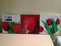 3 x Rose Canvases