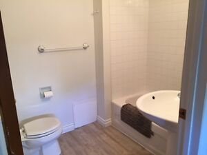1 bedroom suite for rent all utiliites included $725 Moose Jaw Regina Area image 3