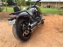 Harley Night Rod Special 2012 immaculate with only 3819kms Renmark Renmark Paringa Preview