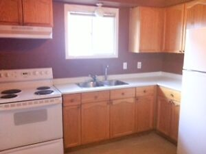 All Inclusive Student Rental 3 BR For the Winter & Summer! Kitchener / Waterloo Kitchener Area image 3