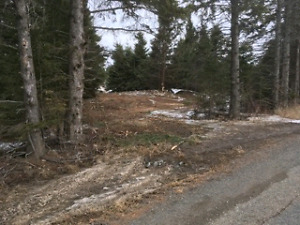 24 Acre Building lot on Townline Road