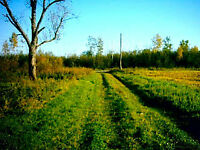159 acres farm between New Liskeard and Englehart, Cochrane area