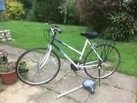 Raleigh bike in need of tlc