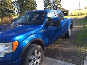 2009 Ford F-150 SuperCrew FX 4 Pickup Truck