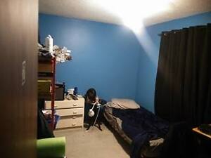 2 rooms available for sublet