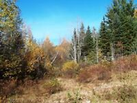 LAND FOR SALE WITH DRILLED WELL
