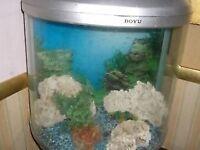 large oval / HALF MOON BOYU aquarium - with stand - 86L - CLACTON ON SEA - CO15 6AJ