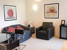 Modern 2 Double Bedroom 2 Bathroom Flat with gym, balcony & concierge. 5 mins walk to ilford station