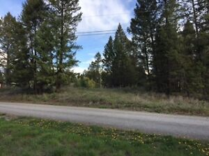 BEAUTIFUL VIEW LOT FOR SALE IN WINDERMERE B.C.