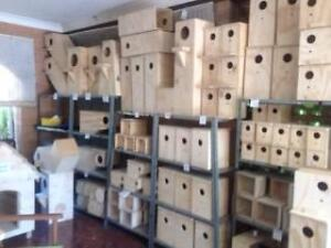 BUDGIE NEST BOX + MANY MORE Upper Caboolture Caboolture Area Preview
