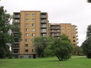 120 Barrett Court - 1410 Sq Ft Condo with every inch updated!