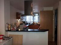 Single room to let, short term weekly