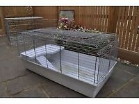 Indoor Guinea Pig / Rabbit Cage
