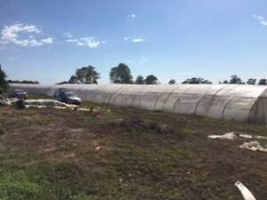 Agricultural Rural Horticulture Greenhouse For Rent Rossmore Liverpool Area Preview