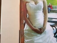 Wedding Dewss