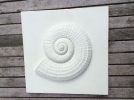 Shell wall plaque