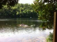 2 Terrains à vendre ensemble  Lac Souris (Mauricie) #6A et #6C