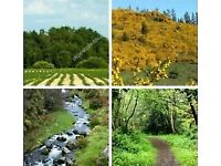 Wanted land, croft or woodland - approx. 1 to 5 acre - North Aberdeenshire.