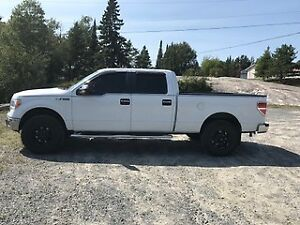 2011 5.0 litre Ford f150