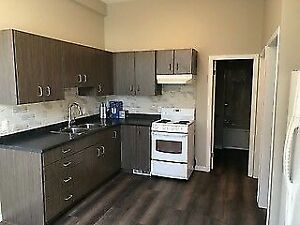 NEWLY RENOVATED 2 Bed/1 Bath house for RENT in HAMILTON