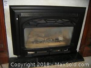 Gas Fireplace Insert C