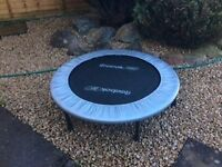 Reebok Rebounder - good condition.