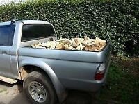 Firewod logs for sale