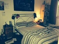 DOUBLE ROOM (ENSUITE) TO RENT IN LARGE FAMILY HOME