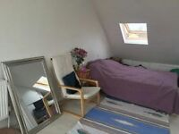 Loft Studio flat (Bathroom and Kitchen unit included)