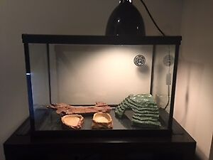 TERRARIUM AND EQUIPMENT FOR SALE