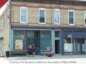 12 plex 9 apartments 3 commercial units in Lucknow London Ontario image 2