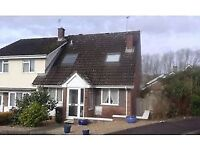 Room to rent in lovely house in Honiton
