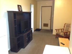 Furnished Suites for Rent in Yorkton, SK Regina Regina Area image 6