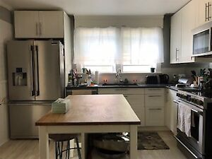 For rent lovely renovated 3 bedroom home in heart of Bridgewater