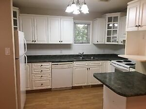 GREAT 3 BEDROOM BI - LEVEL APARTMENT AVAILABLE MAY 1!