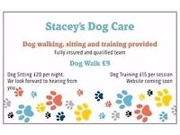 Stacey's Dog Day Care. Walking, sitting and training services provided