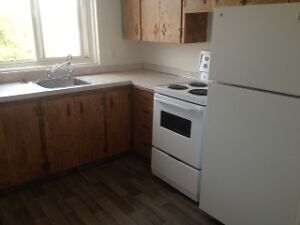 2 bedroom newly renovated suite for rent