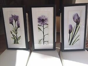 Beautiful Set of Three Classic Black Framed Iris Flowers