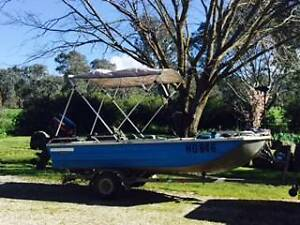 3.9 mt outboard fishing boat Wymah Greater Hume Area Preview