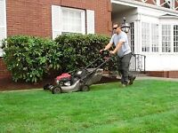 Lawn cutting services and yard cleanup