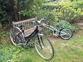 Women's bicycle with tagalong trailer.