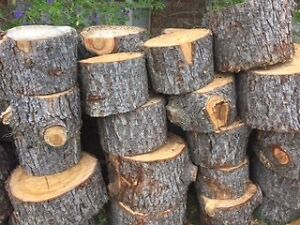 FREEEE  FIREWOOD !! St Clair Penrith Area Preview